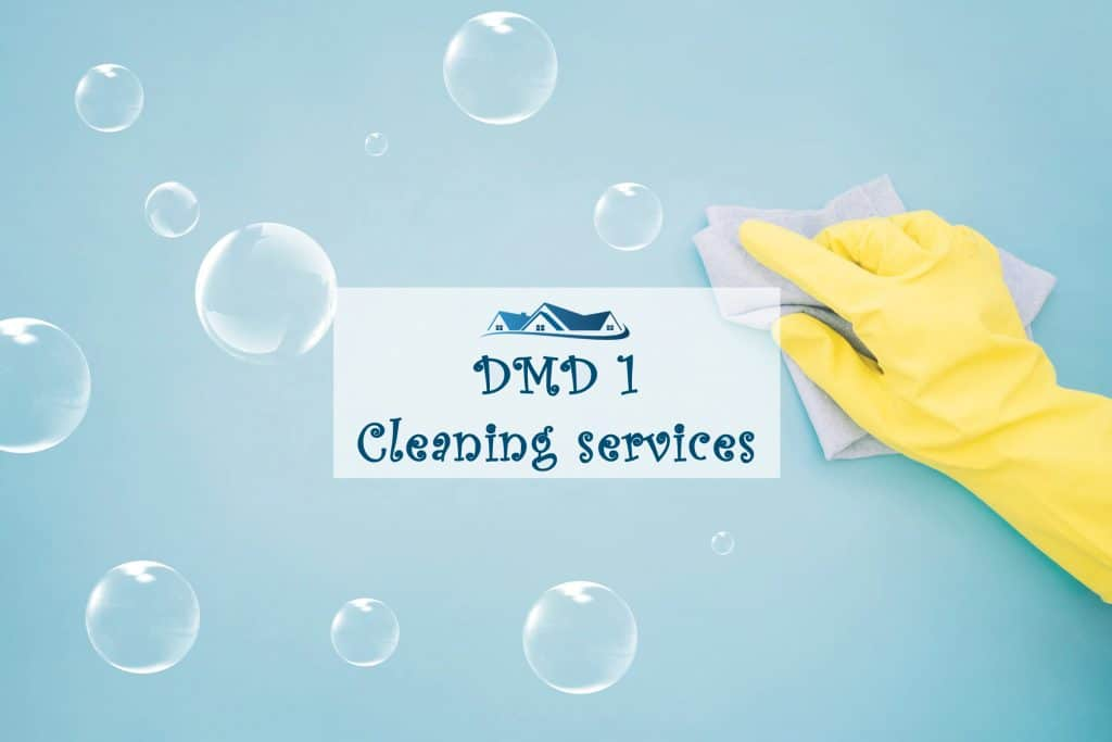 Project dmd 1 cleaning services